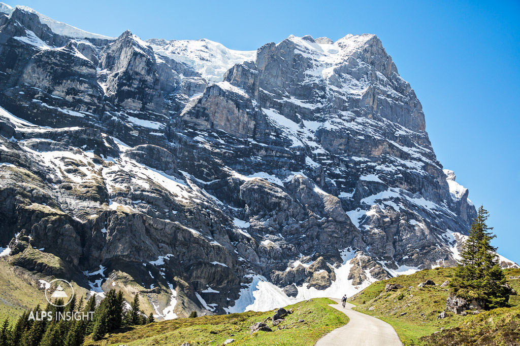 Cycling the Grosse Scheidegg: feeling small under the huge face of the Wetterhorn